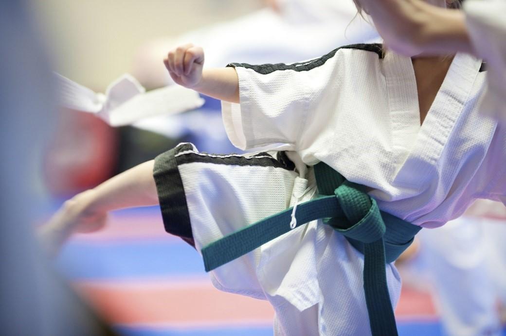 Fujian White Crane Kung Fu for Children and Beginners