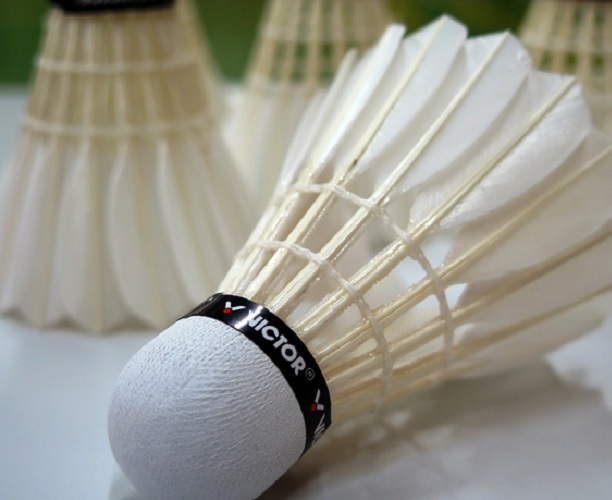 Haughton Community Badminton Club