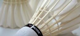 Haughton Community Badminton Club