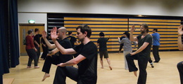 Tai Chi (Adults)