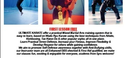 Ultimate Karate