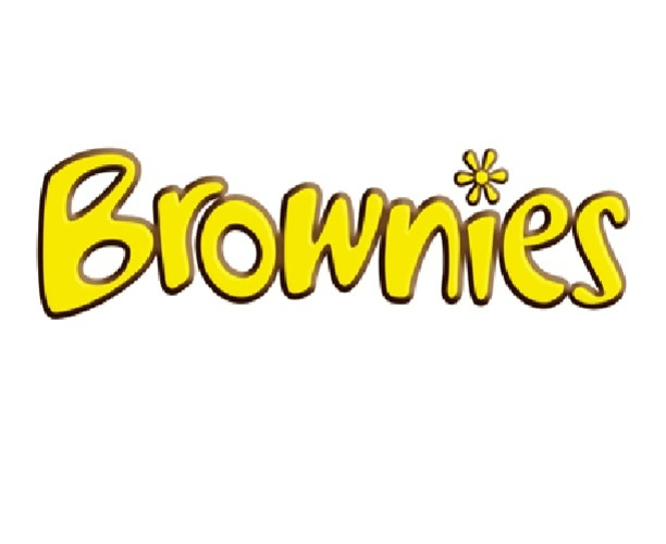 1st Wootton Brownies