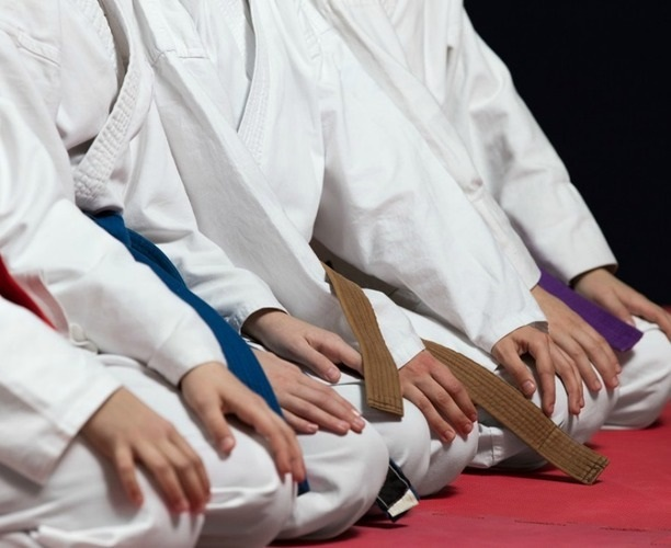 Jinmukan Dojo Martial Arts  - KIDS
