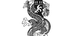 Worcester Dragon Boat Racing Club (WDBRC)