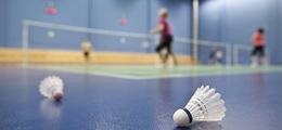 Badminton (Fridays)