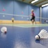 Adults Badminton - Sunday