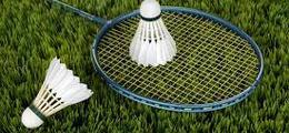 Warriors Badminton