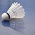 Ladies Badminton