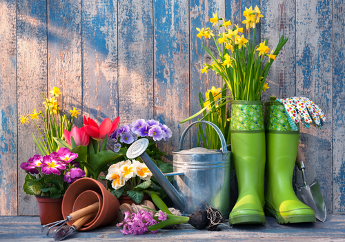 Marshland Gardening Group