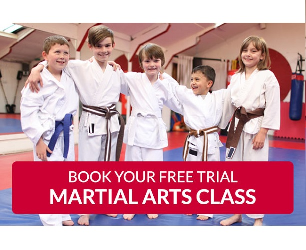 The Manor Primary - Matt Fiddes Martial arts