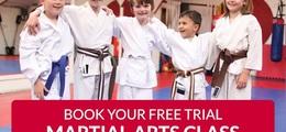 The Manor Primary - Matt Fiddes Martial arts