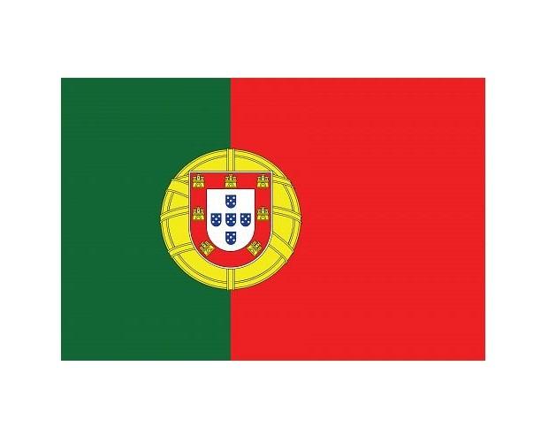 Portuguese Language School