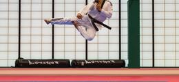 London Taekwondo Academy - Taekwondo Club