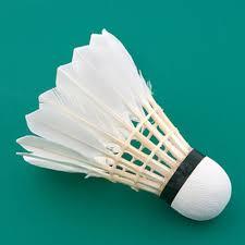 Hale Badminton Club