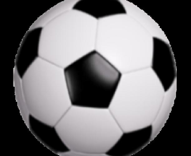 303 Soccer School