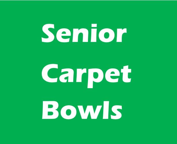 Senior Carpet Bowls