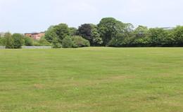 Thumb_queen_s_park_grass_1