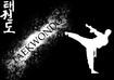 Venue_class_taekwondo_pic