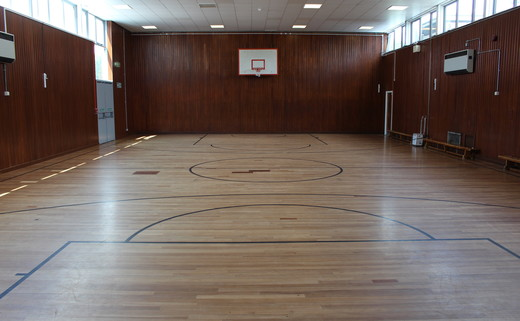 Regular_light_hall_-_gymnasium_th