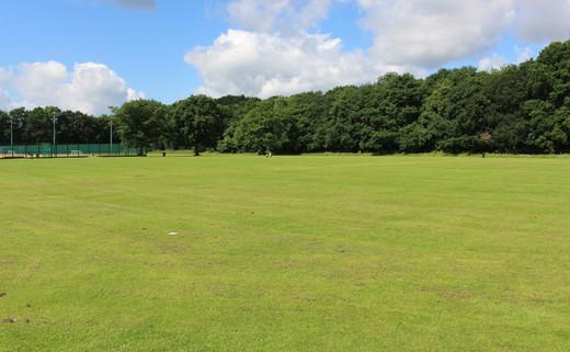 Regular_light_hall_-_grass_pitches_th