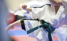 Thumb_karate_kid_category