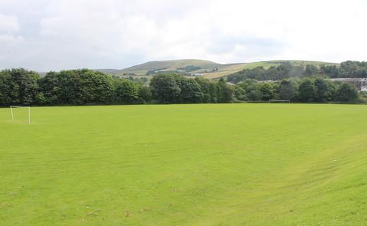 Regular_whitworth_-_grass_pitch_th