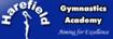 Venue_class_gymnastics