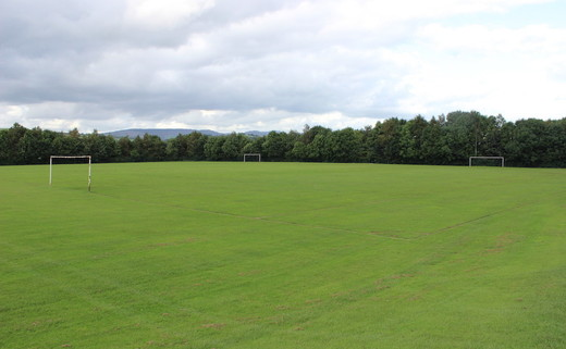 Regular_westwood_-_grass_pitch__2__th