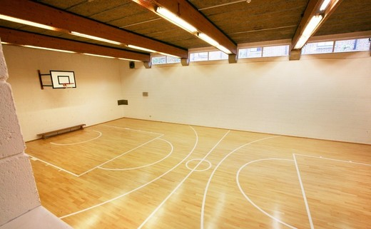 Regular_sports_hall_image_2