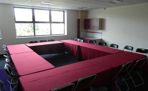 Regular_wren_boardroom_th
