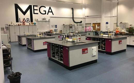 Regular_10a._mega_lab