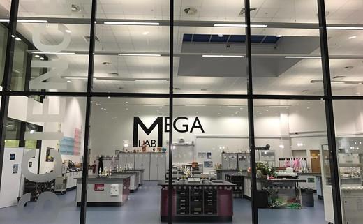 Regular_10._mega_lab