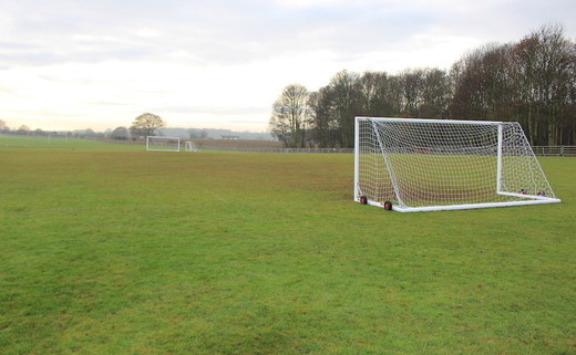 Regular_hayfield_-_grass_pitches_1