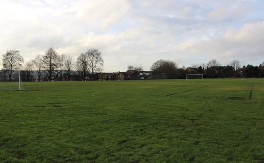 Regular_haywood_-_grass_pitch__2__th