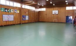 Thumb_finham_park_-_gymnasium_2
