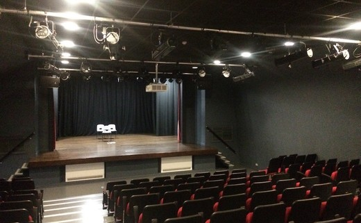 Regular_ark_putney_-_theatre1_th