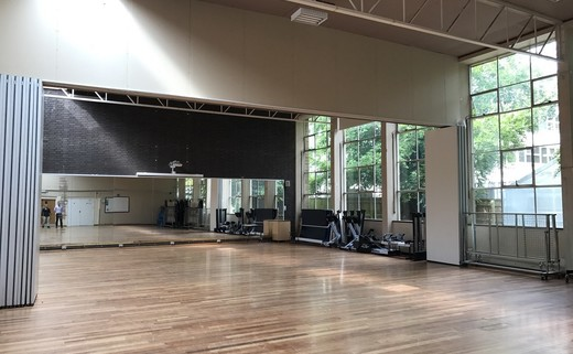 Regular_gym-dance_studio