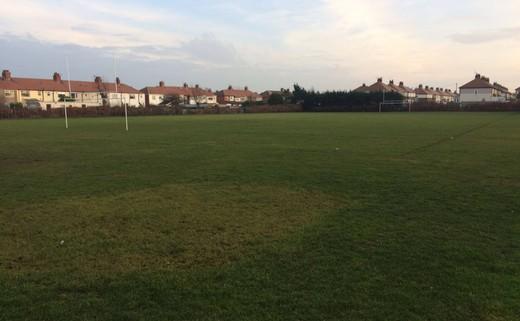 Regular_highfield_-_grass_pitches_th