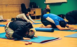 Pan & Luna Yoga- Yoga for Teens