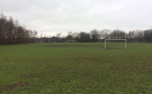 Regular_whitcliffe_-_grass_pitches
