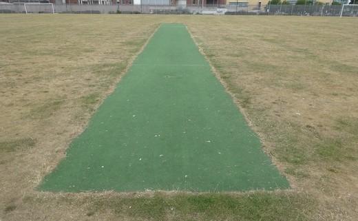 Regular_cricket_wicket