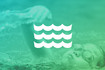 Venue_class_bookings_plus_generic_swimming