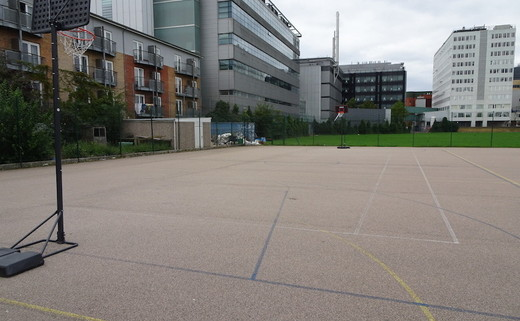 Regular_ark_burlington_danes_-_tarmac_muga_2