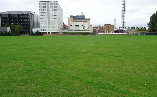 Regular_ark_burlington_danes_-_grass_pitches_2