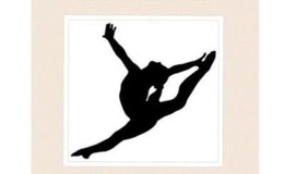 Shadwicks Gymnastics