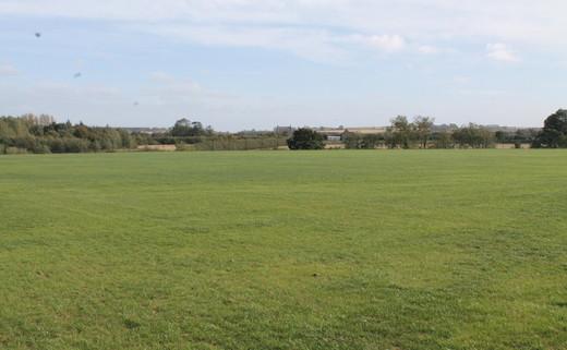 Regular_grass_pitch__no_markings_or_goals_