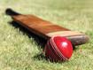 Venue_class_cricket