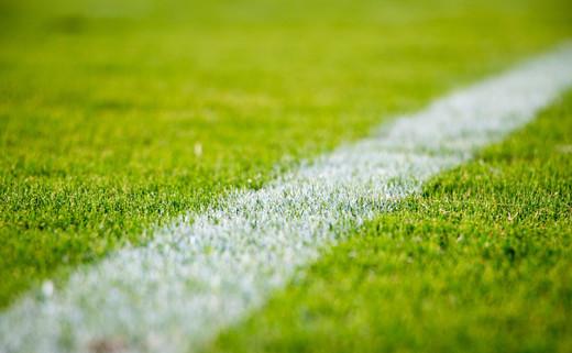 Sports & Playing Fields