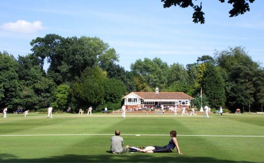 Regular_6._first_cricket_pitch