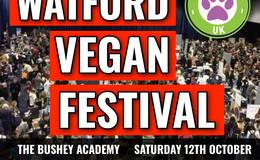 Vegan food festival
